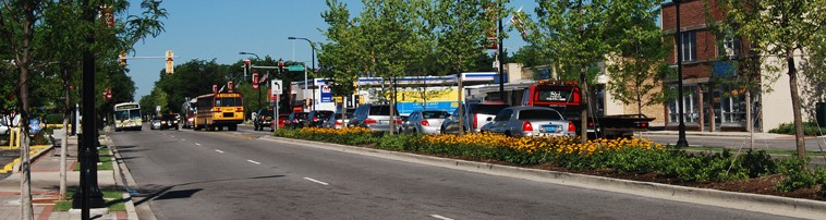 Capital Improvement Projects, Street Beautification